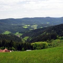 Kupferberg-4-05-09