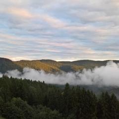 Landschaftsbild-mit-Nebel