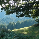 I-weg_Schapbach