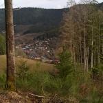 Landschaftsbild-ins-Obertal